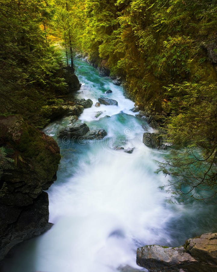Lynn Creek en Vancouver, A.C. fotos de archivo