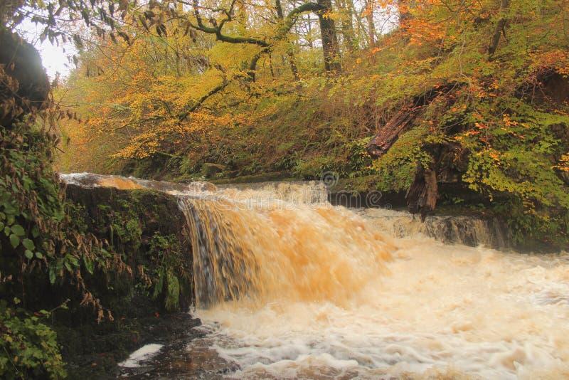Lynn falls, Dalry royalty free stock image