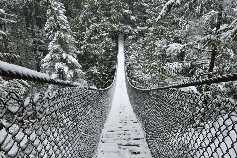 Lynn Valley Park en día nevoso fotografía de archivo libre de regalías