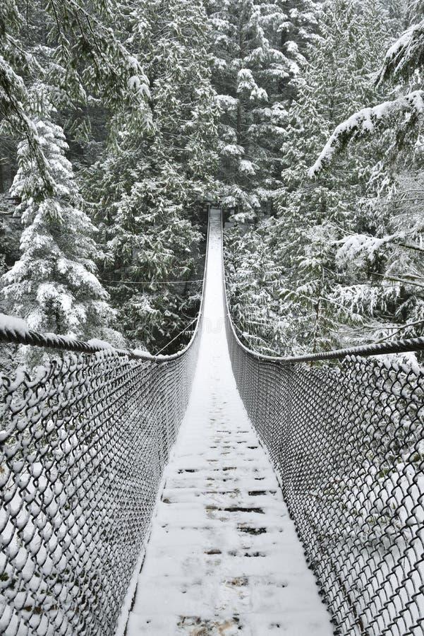 Lynn Valley Park en día nevoso fotografía de archivo