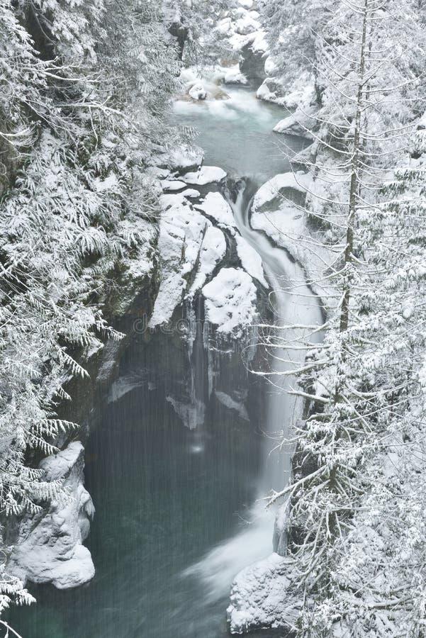 Lynn Valley Park en día nevoso fotos de archivo libres de regalías