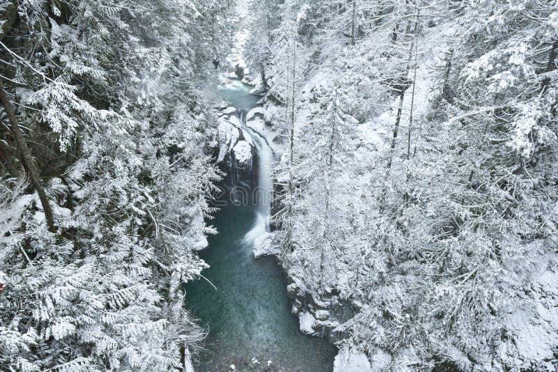 Lynn Valley Park en día nevoso imagenes de archivo