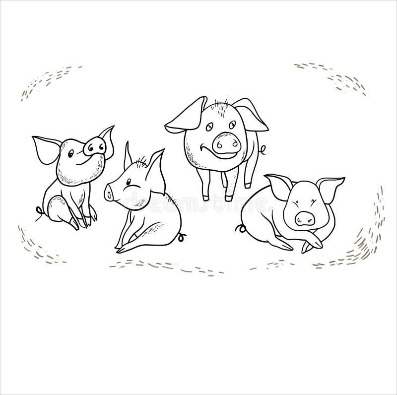 Lynnetecknad filmtecken, gulligt svin vektor illustrationer