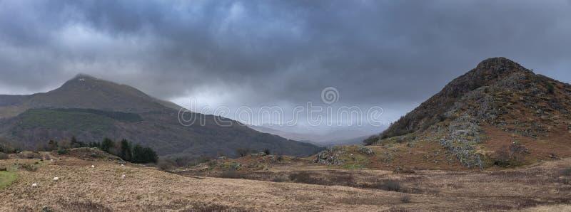 Lynnig och dramatisk vinterlandskapbild av Moel Saibod från Crimpiau i Snowdonia med att bedöva axlar av ljus i stormigt royaltyfri foto
