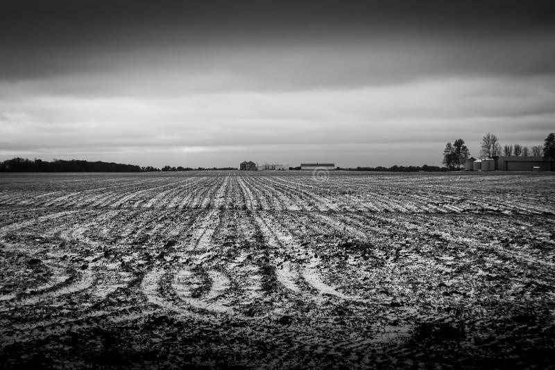 Lynniga vinterlantgårdfält lägger kargt i det kalla Illinois vinterlandskapet royaltyfri foto