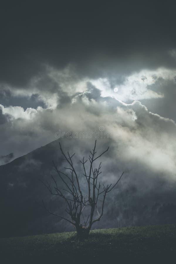Lynnigt väder för flyktigt ögonblick i berg royaltyfria bilder