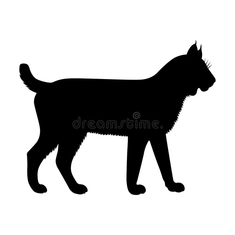 lynx ilustração stock