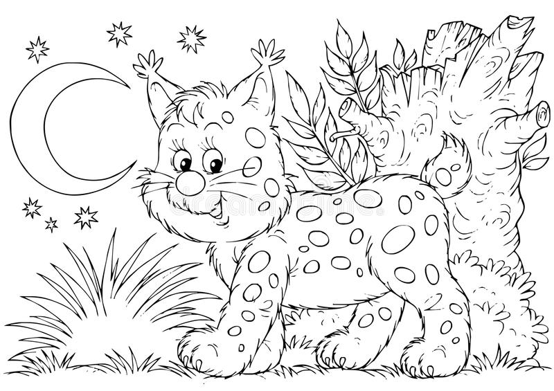 Download Lynx stock illustration. Illustration of animals, animal - 15050234