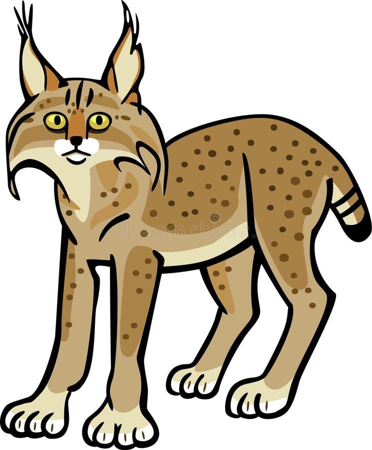 lynx ilustração royalty free