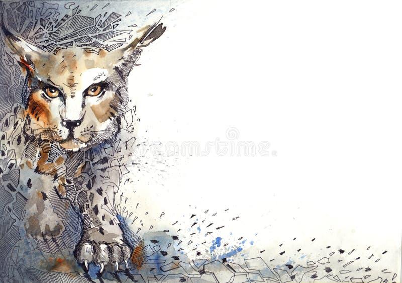 lynx ilustração do vetor