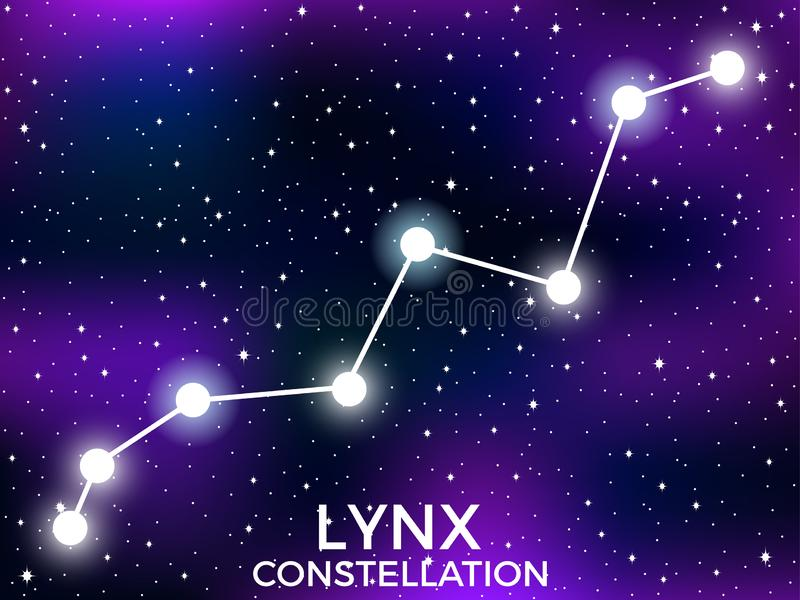Lynx constellation. Starry night sky. Cluster of stars and galaxies. Deep space. Vector. Illustration vector illustration