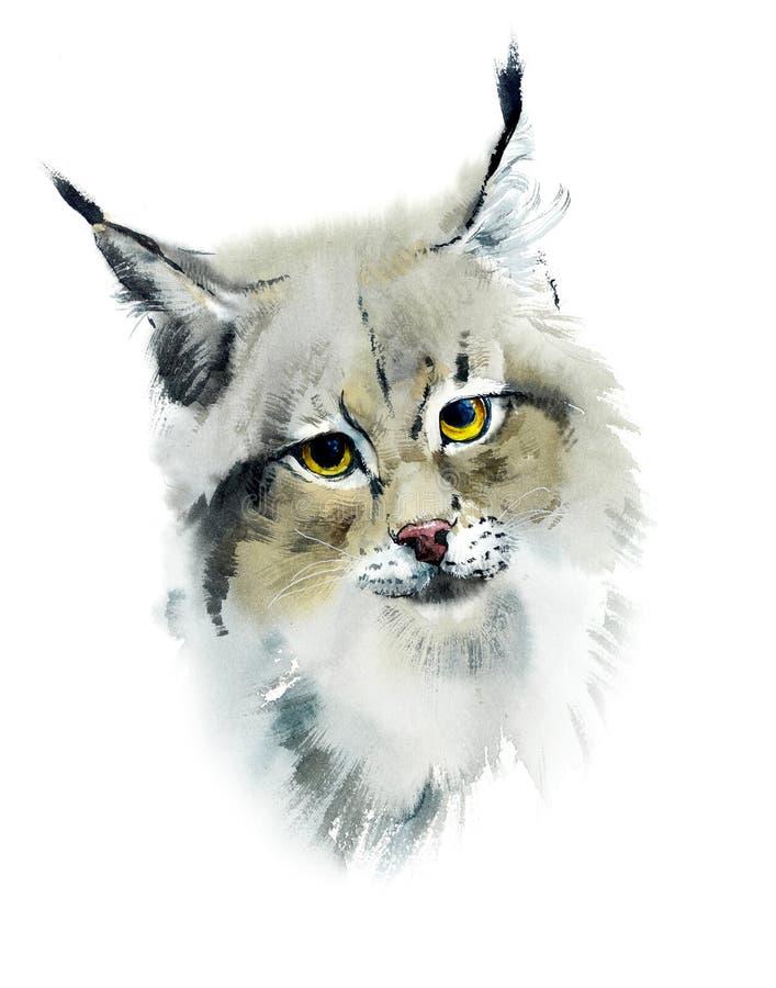 lynx Ilustração tirada mão de Wtercolor ilustração do vetor