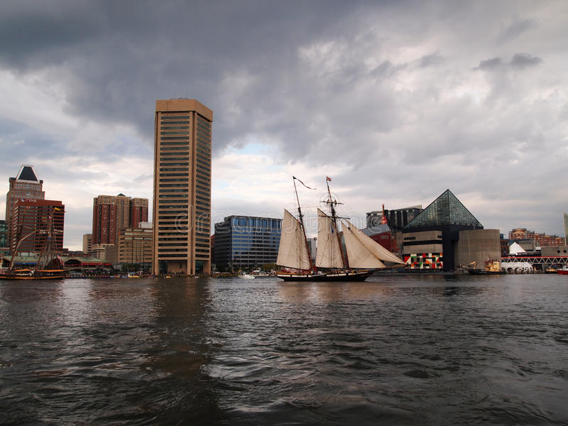 Lynx Sails In Baltimore Inner Harbor royalty free stock images