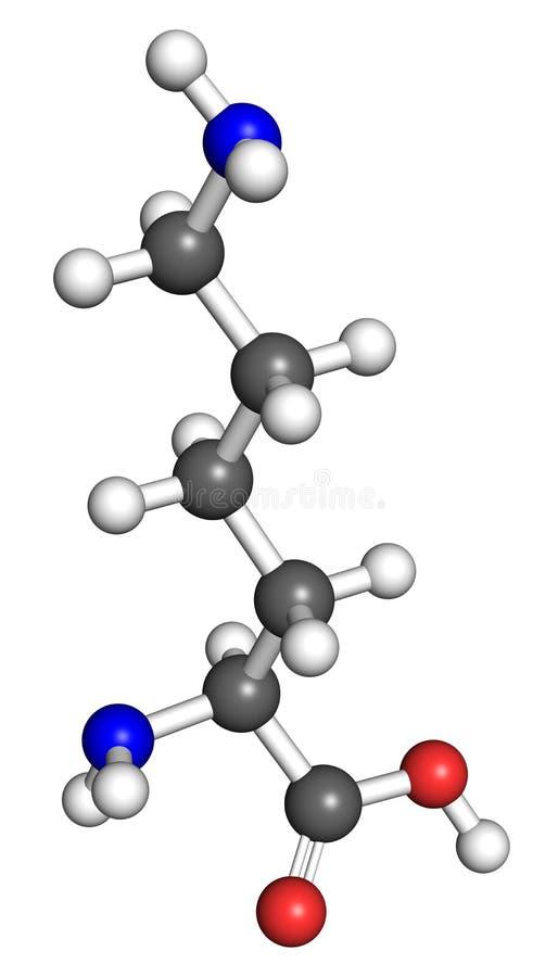 Lysinemolekyl vektor illustrationer