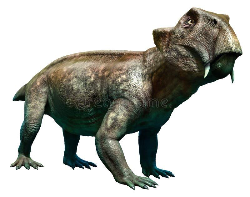 Lystrosaurus. A dinosaur from the Permian era royalty free illustration