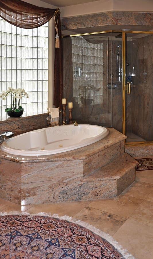 lyxig dusch för bad arkivbild