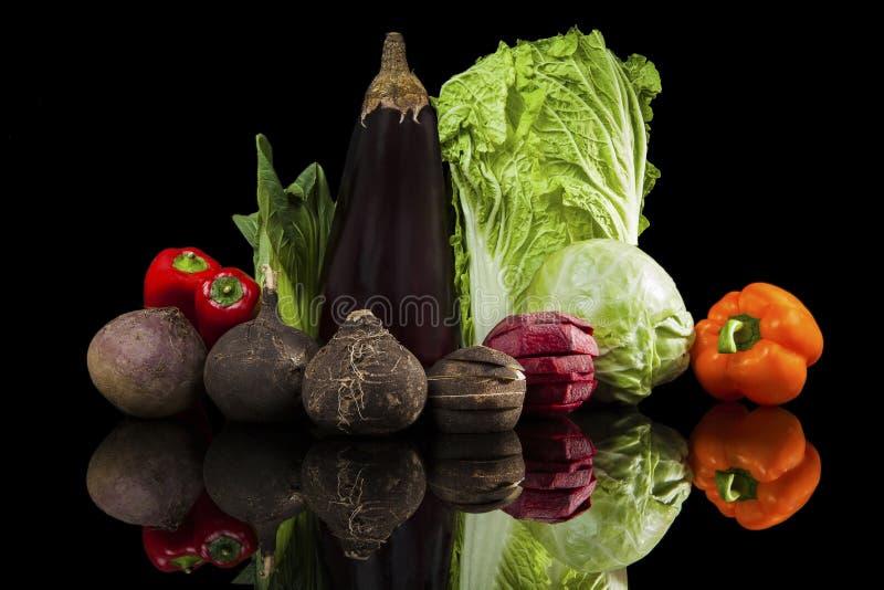 Lyxig färgrik grönsakstilleben royaltyfri foto
