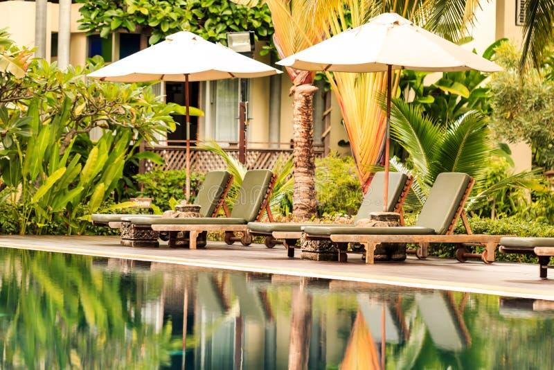 Lyxig simbassäng i en tropisk trädgård fotografering för bildbyråer