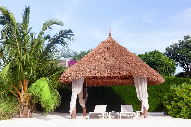 Lyxig strand som förlägga i barack i Zanzibar, Tanzania royaltyfri fotografi