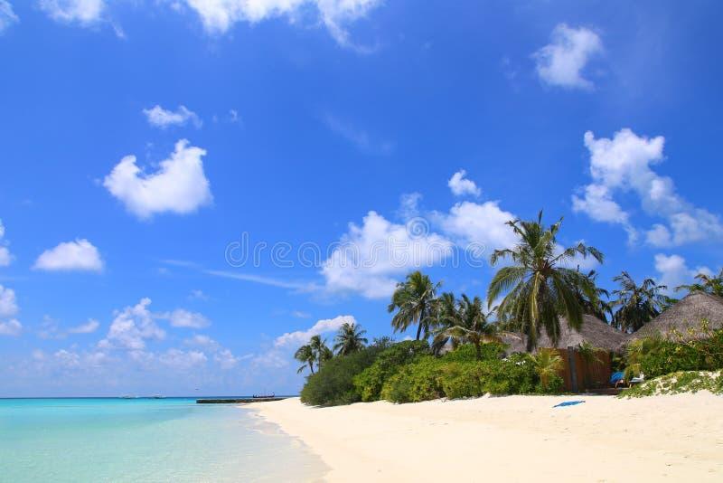 Lyxig strandsemesterort, bungalow nära ändlös pöl över havet, begrepp för sommarsemester arkivbilder
