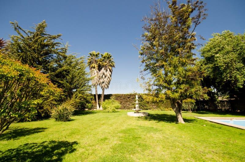 Lyxig trädgård royaltyfri fotografi