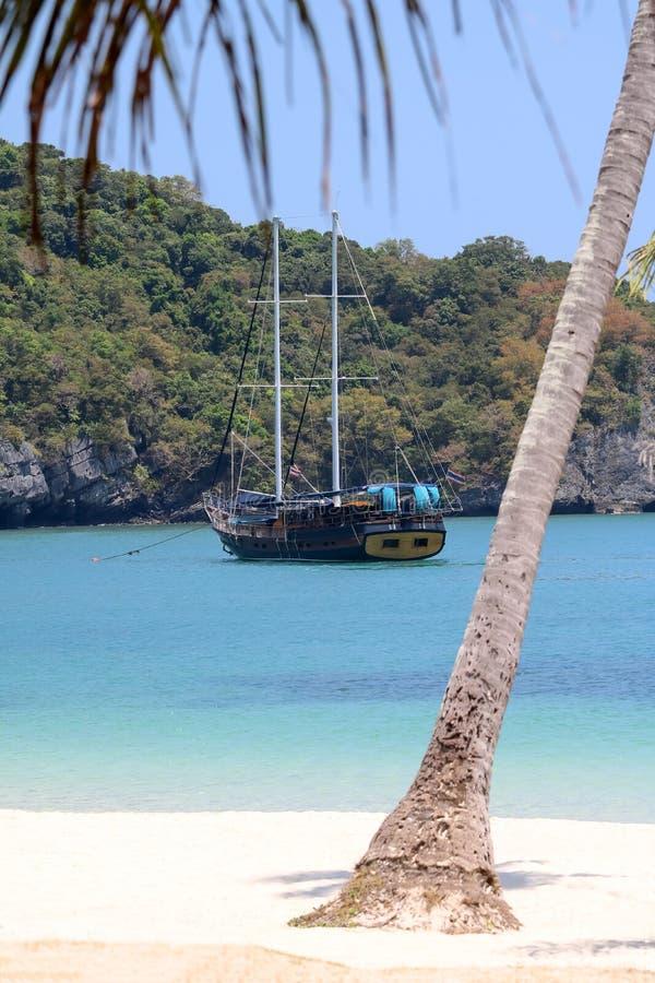 Lyxig yachtsegling i den tropiska ön, den vita sandstranden och havet på Samui royaltyfri bild