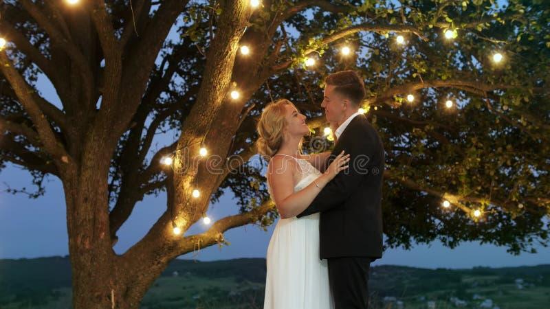 Lyxiga par i aftonklänningar kramar nära ett stort träd med girlanden arkivfoton