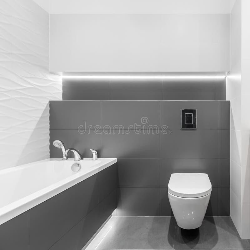 Lyxigt grått och vitt badrum arkivfoto