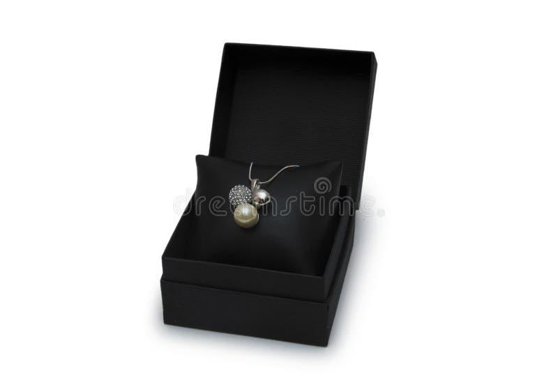 Lyxigt halsband i ask royaltyfri foto