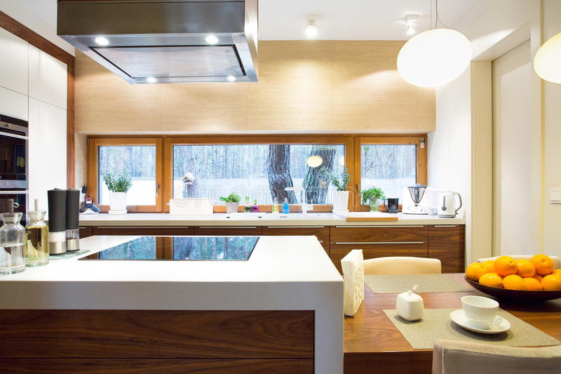 Lyxigt kök med modern utrustning royaltyfri foto