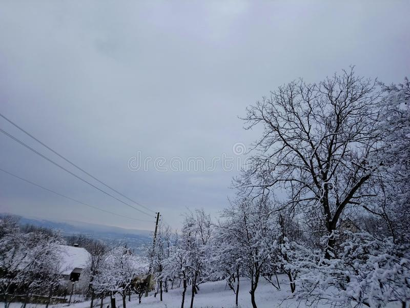 Mágica do inverno imagem de stock