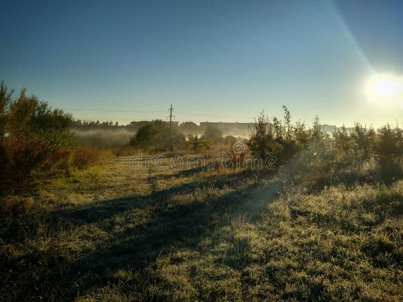 Mágica do sol da manhã fotografia de stock royalty free