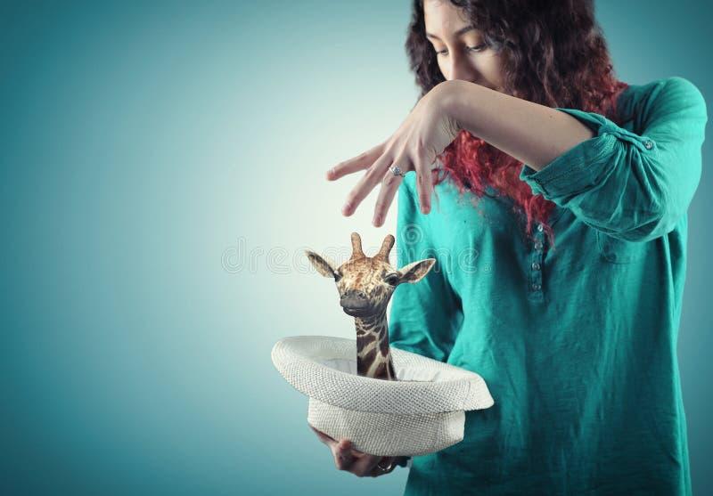 mágico foto de stock royalty free