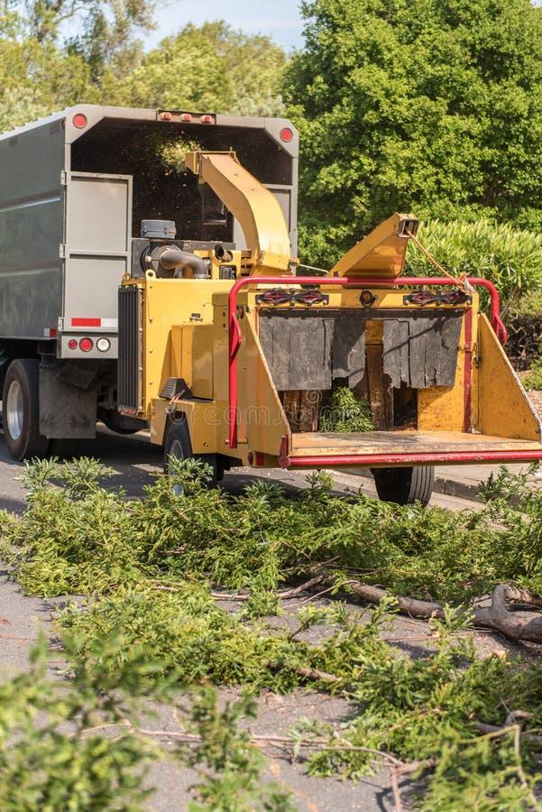 A máquina chipper de madeira funciona em ramos da sequoia vermelha foto de stock royalty free
