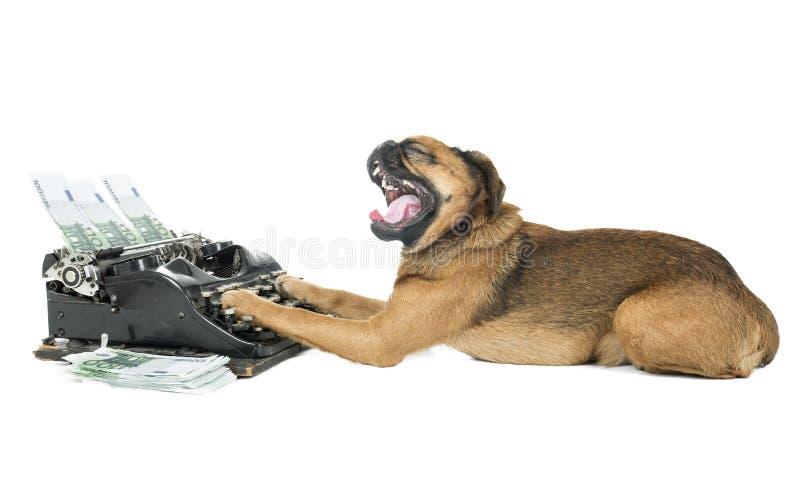 Máquina de escrever do cão fotos de stock royalty free