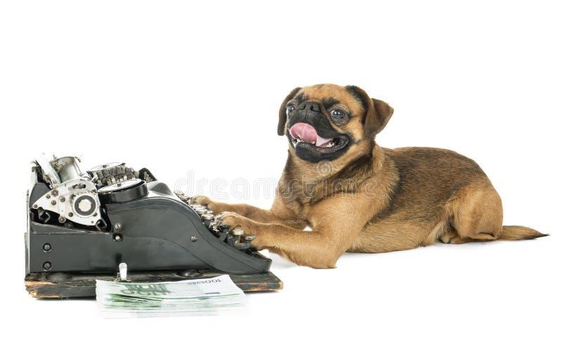 Máquina de escrever do cão imagens de stock
