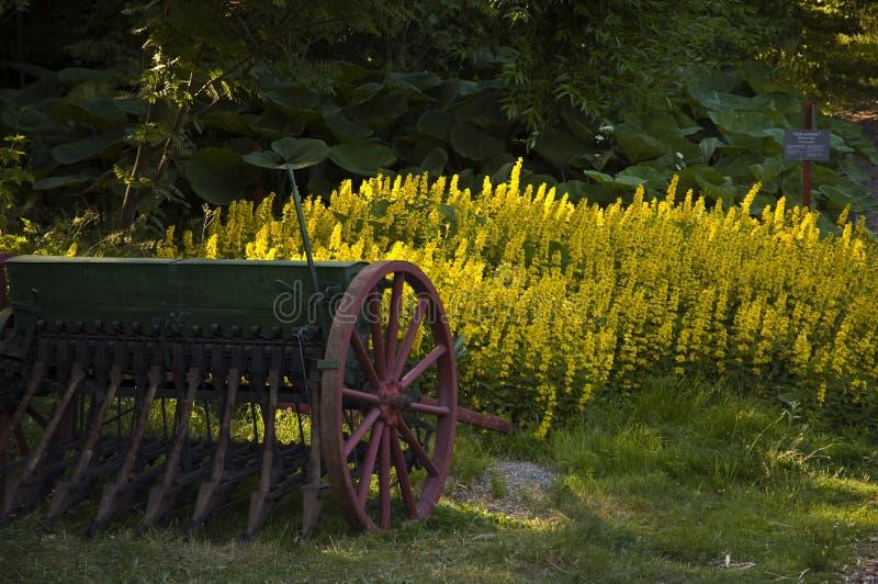 Máquina de semear antiga em um gramado. fotografia de stock royalty free