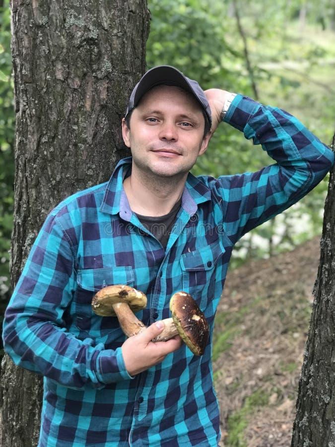 Máquina desbastadora do cogumelo na floresta que está entre as árvores, guardando dois grandes cepa-de-bordéus em suas mãos imagem de stock