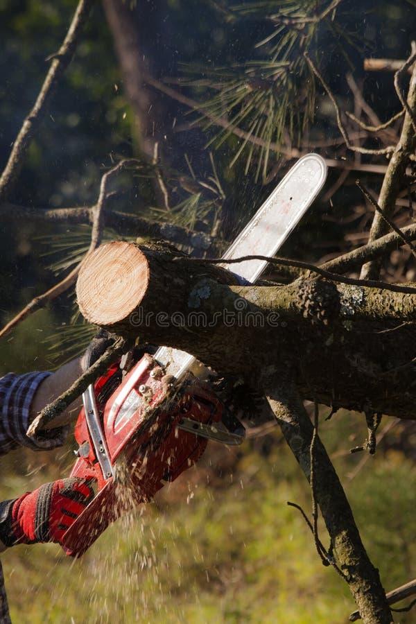 Máquina na ação fotografia de stock royalty free