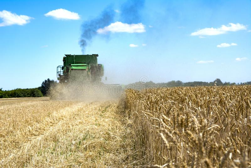 Máquina segadora en un campo de trigo imagenes de archivo