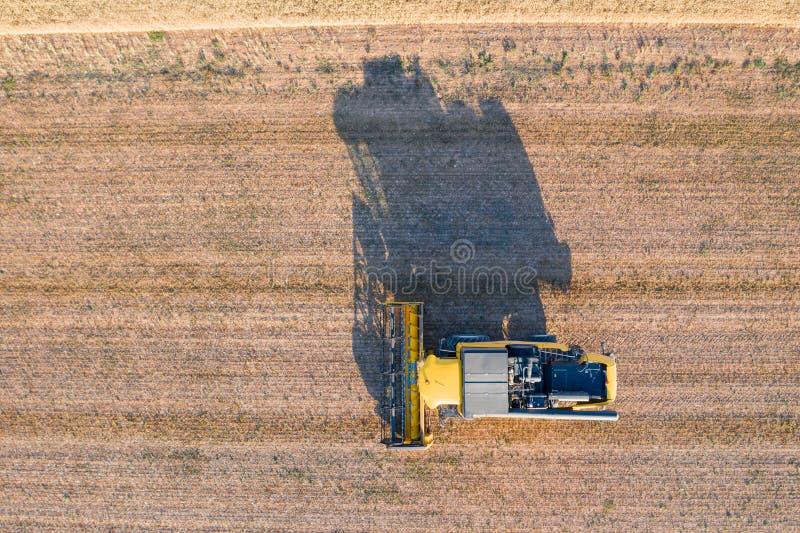 Máquina segadora que trabaja en el campo de trigo grande, visto del aire fotos de archivo