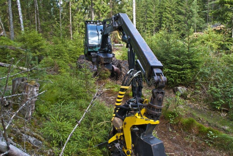 Máquinas da floresta fotografia de stock royalty free
