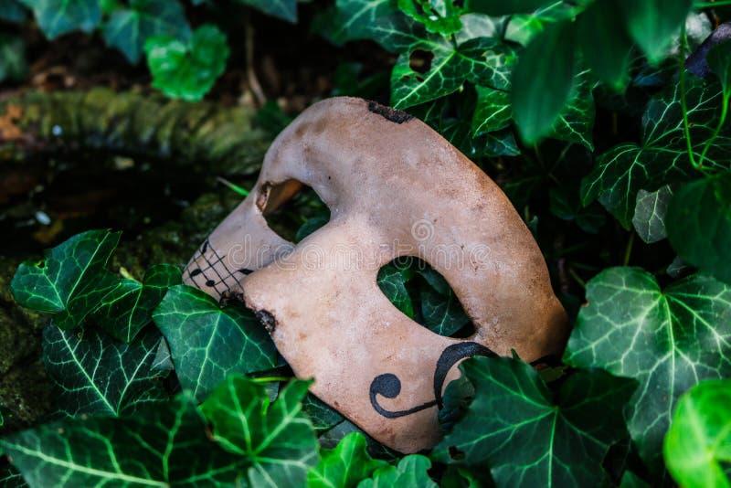Máscara com notas da música imagem de stock royalty free