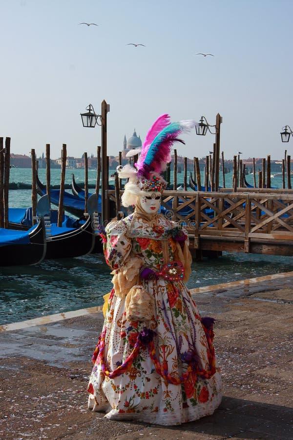 Máscara del carnaval fotografía de archivo libre de regalías