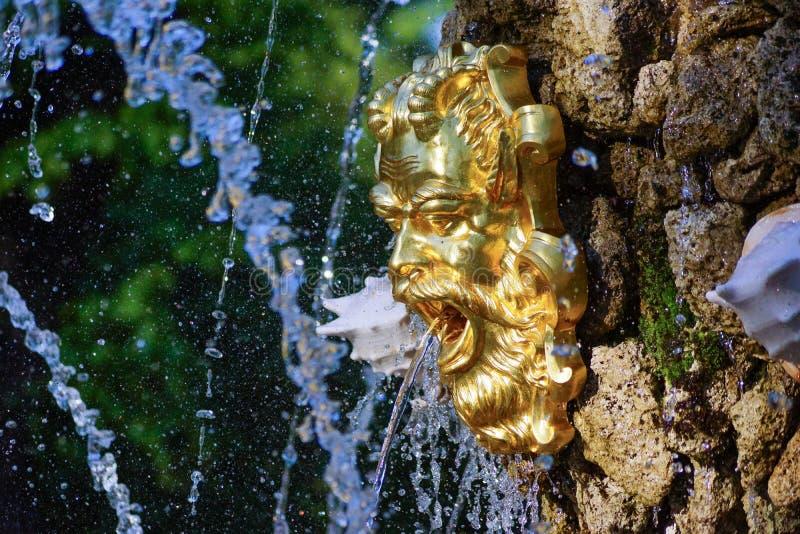 Máscara dourada na fonte no jardim do verão de St Petersburg imagem de stock royalty free