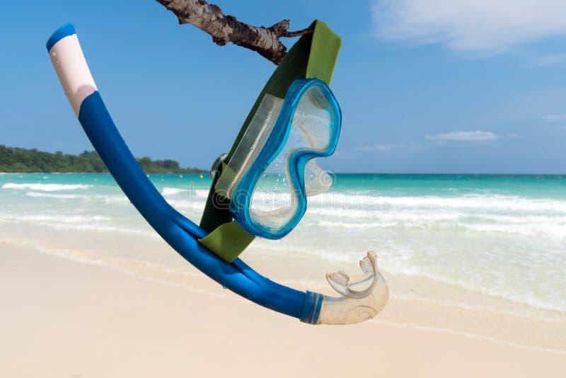 A máscara e o tubo de respiração azuis penduram em um ramo de árvore contra o contexto do mar imagem de stock
