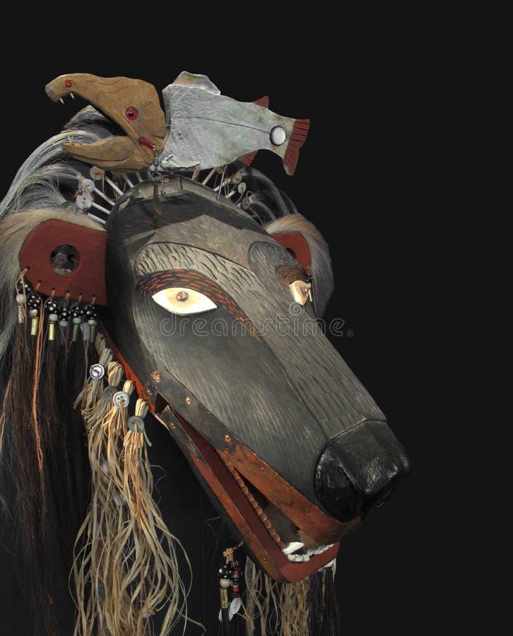 Máscara indiana americana do urso isolada. fotografia de stock