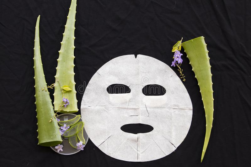 Máscara natural de la hoja del aroma del aleo herbario Vera imágenes de archivo libres de regalías