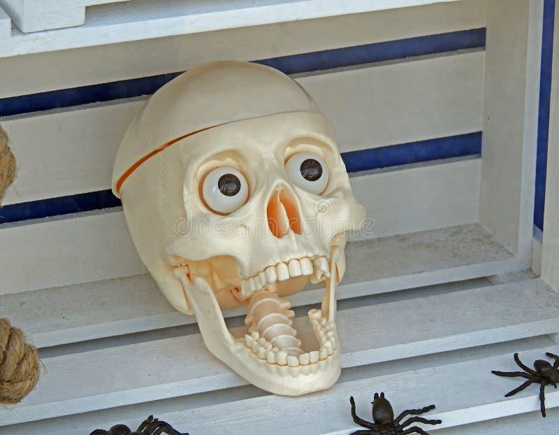 Máscara o Dia das Bruxas do brinquedo da cara do crânio do horror fotos de stock royalty free
