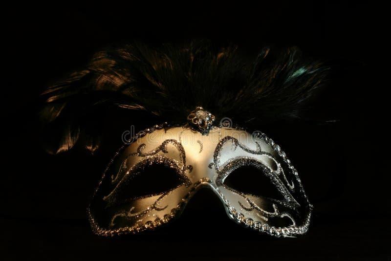 Máscara prateada imagens de stock royalty free
